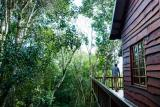 Moon Shine on Whiskey Creek Cabins: Tree Frog Forest Cabin