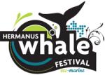 Hermanus Whale Festival