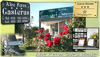 Aloe Ferox Guest House: Albertinia Accommodation